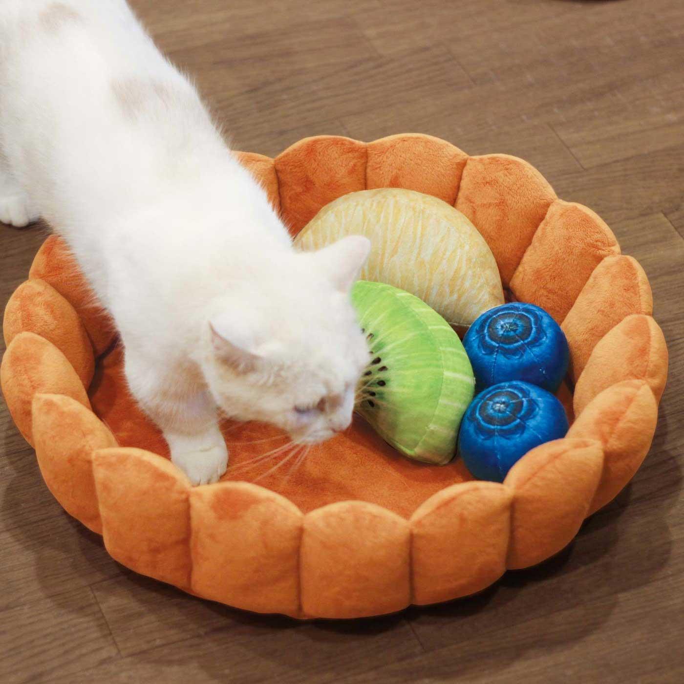 水果撻寵物床